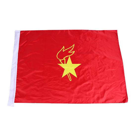 少先队大队旗