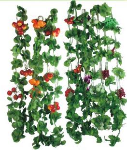 水果小叶花藤