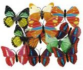 塑料装饰蝴蝶